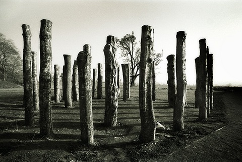 'Pillars of Knowth'. Photo by Mary Hartfelder