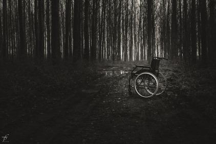 wheelchair-567807_1280